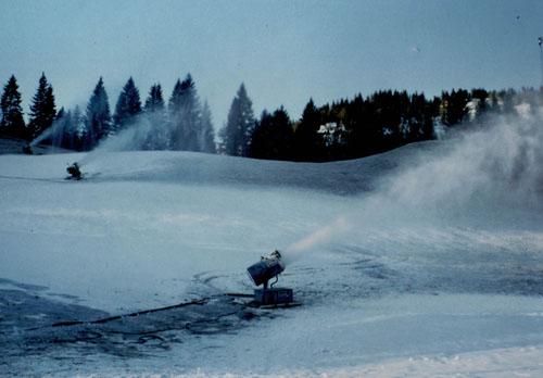 images/geschichte/1984_Beschneiung.jpg